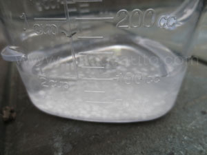 塩カル実験(雑草)2回目1-2